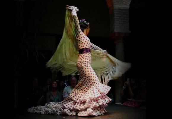 Espectáculos de Flamenco en Málaga