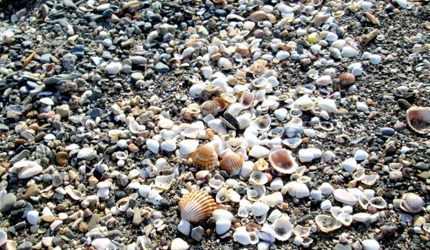 visitar playa san julian malaga